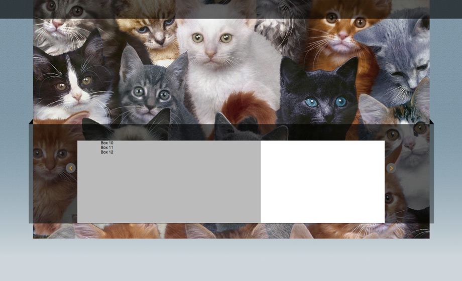 Stripped bare! Grey boxes & cats from the internet